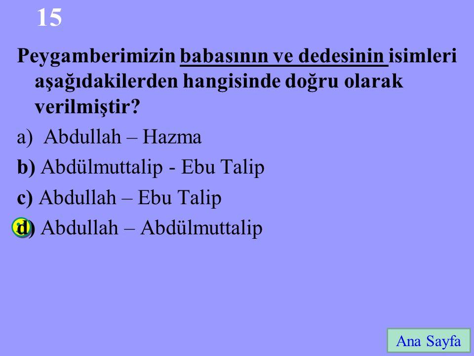 15 Peygamberimizin babasının ve dedesinin isimleri aşağıdakilerden hangisinde doğru olarak verilmiştir