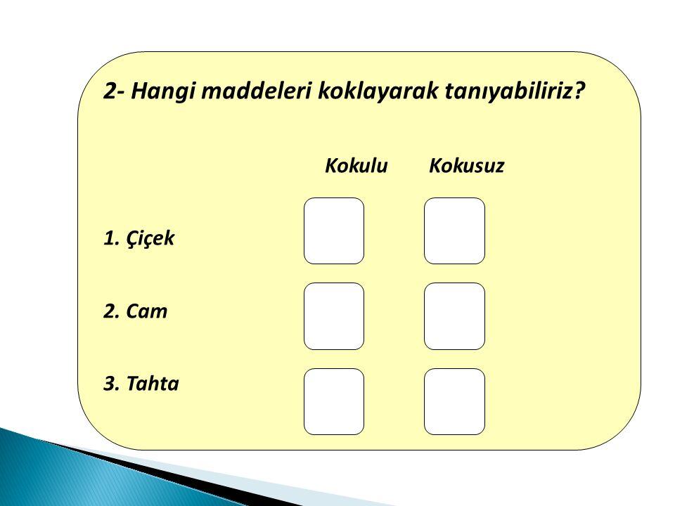 2- Hangi maddeleri koklayarak tanıyabiliriz