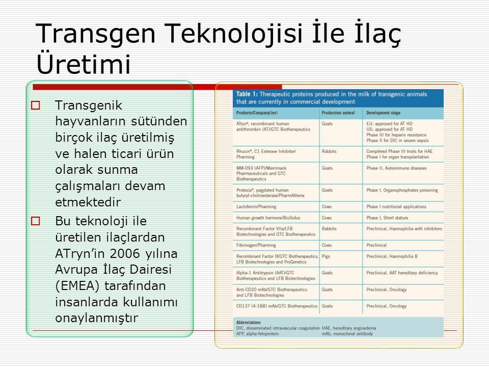 Transgen Teknolojisi İle İlaç Üretimi