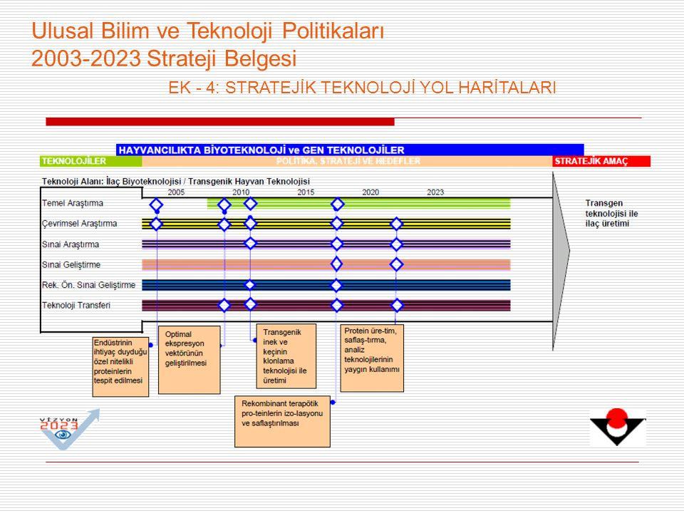 Ulusal Bilim ve Teknoloji Politikaları 2003-2023 Strateji Belgesi