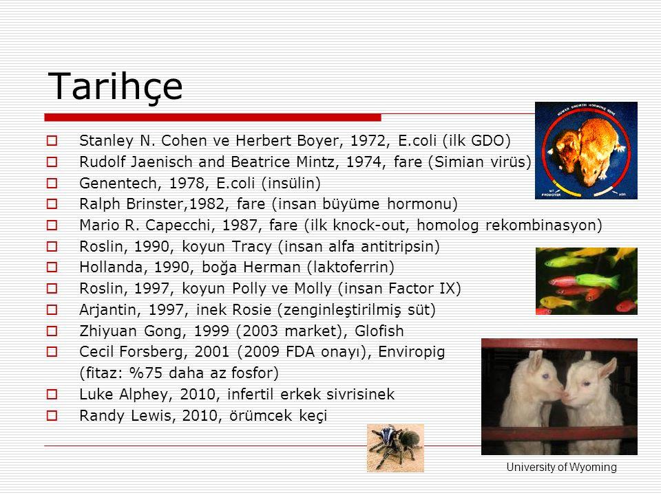 Tarihçe Stanley N. Cohen ve Herbert Boyer, 1972, E.coli (ilk GDO)