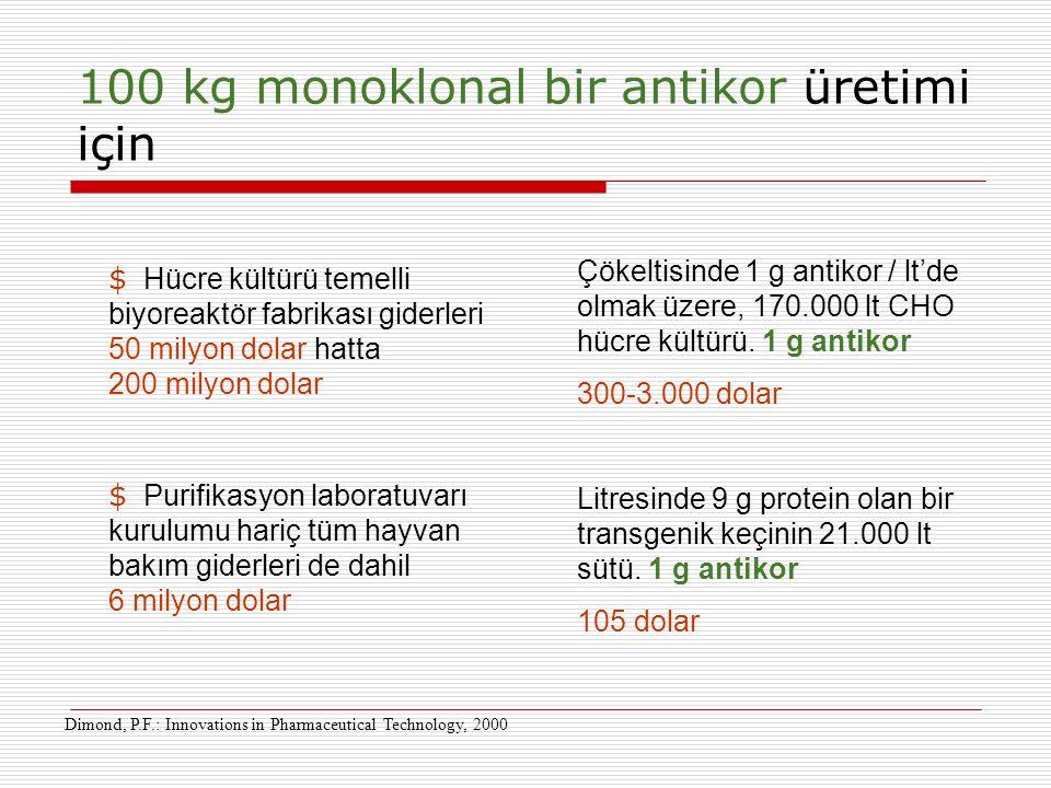 100 kg monoklonal bir antikor üretimi için