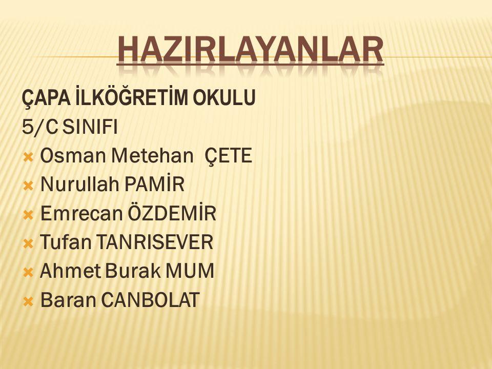 HAZIRLAYANLAR ÇAPA İLKÖĞRETİM OKULU 5/C SINIFI Osman Metehan ÇETE