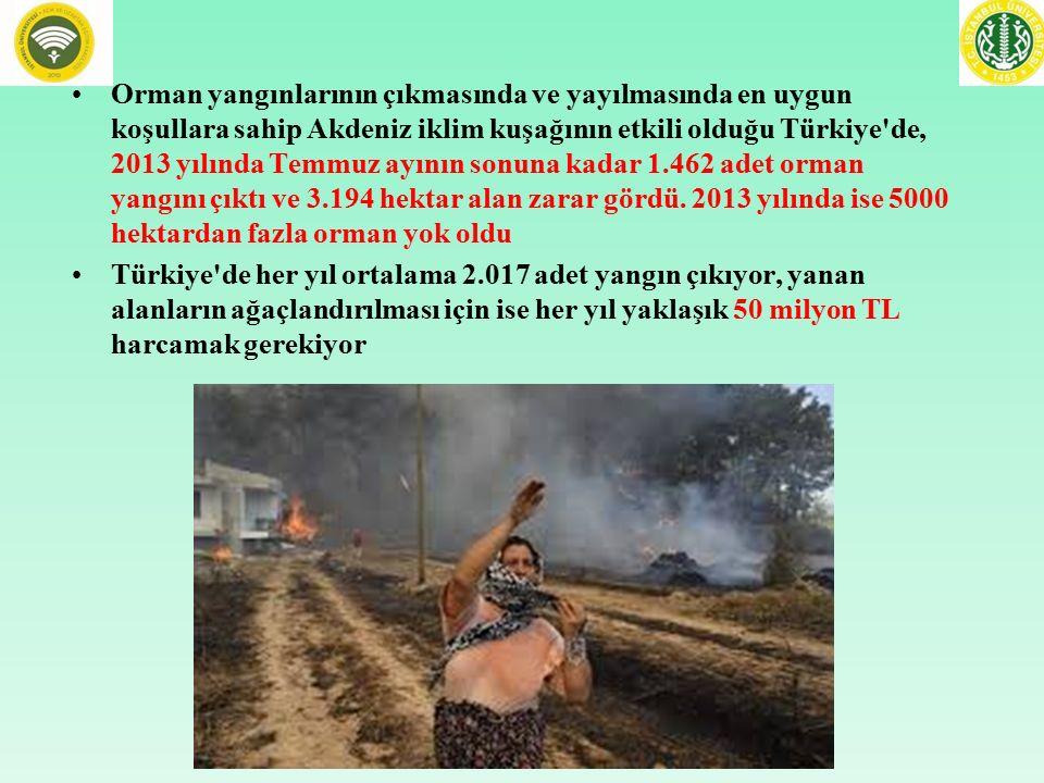 Orman yangınlarının çıkmasında ve yayılmasında en uygun koşullara sahip Akdeniz iklim kuşağının etkili olduğu Türkiye de, 2013 yılında Temmuz ayının sonuna kadar 1.462 adet orman yangını çıktı ve 3.194 hektar alan zarar gördü. 2013 yılında ise 5000 hektardan fazla orman yok oldu
