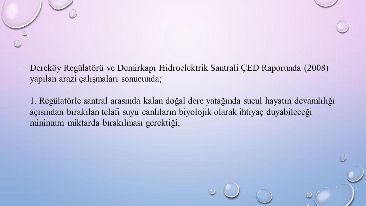 Dereköy Regülatörü ve Demirkapı Hidroelektrik Santrali ÇED Raporunda (2008) yapılan arazi çalışmaları sonucunda;