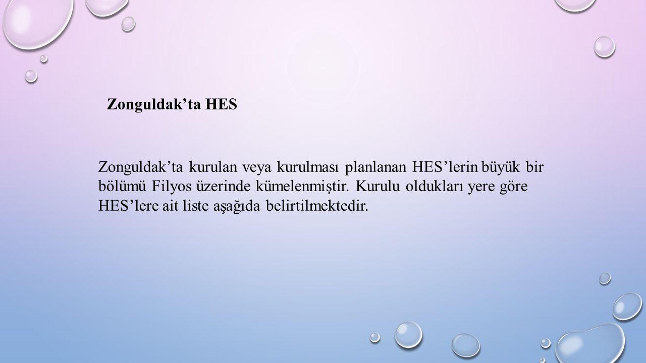 Zonguldak'ta HES