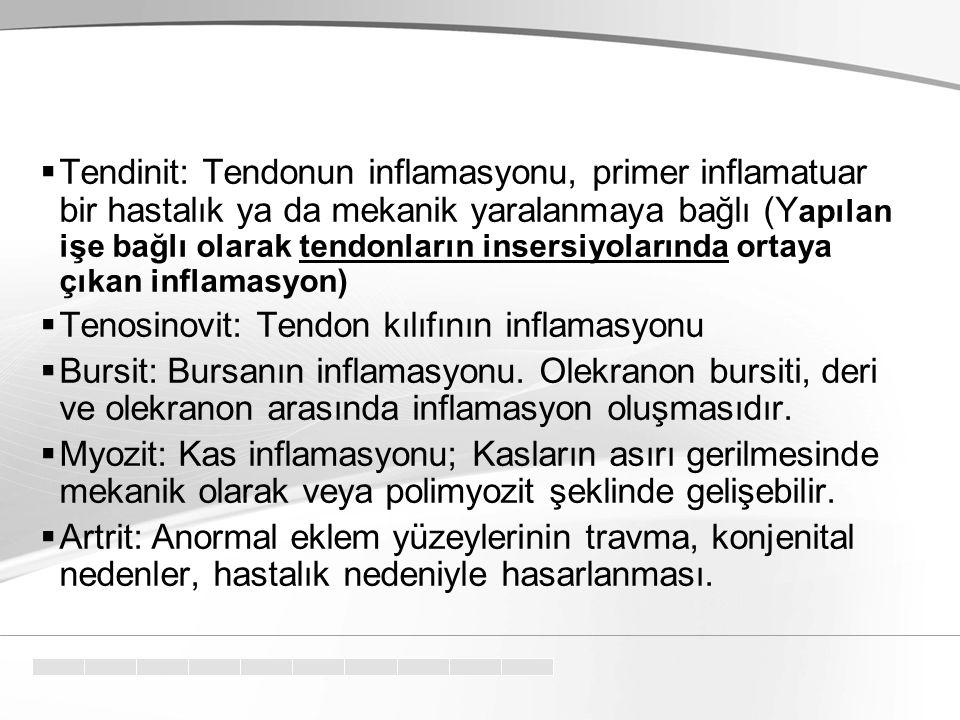 Tendinit: Tendonun inflamasyonu, primer inflamatuar bir hastalık ya da mekanik yaralanmaya bağlı (Yapılan işe bağlı olarak tendonların insersiyolarında ortaya çıkan inflamasyon)