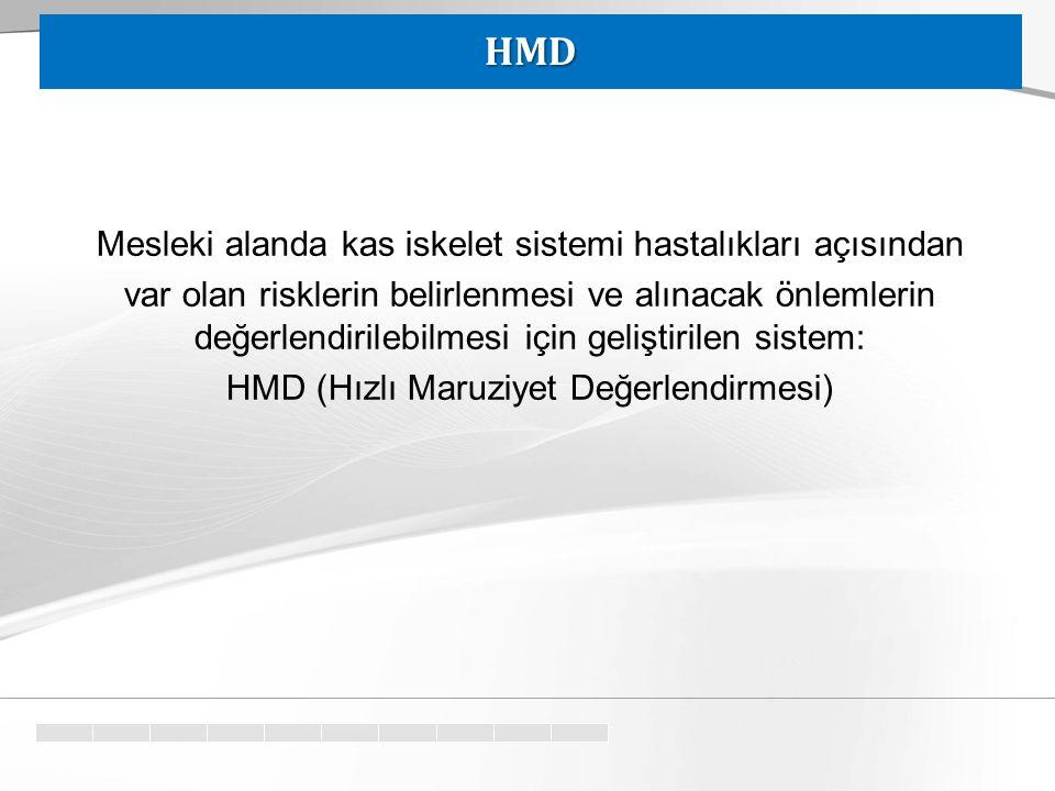HMD Mesleki alanda kas iskelet sistemi hastalıkları açısından