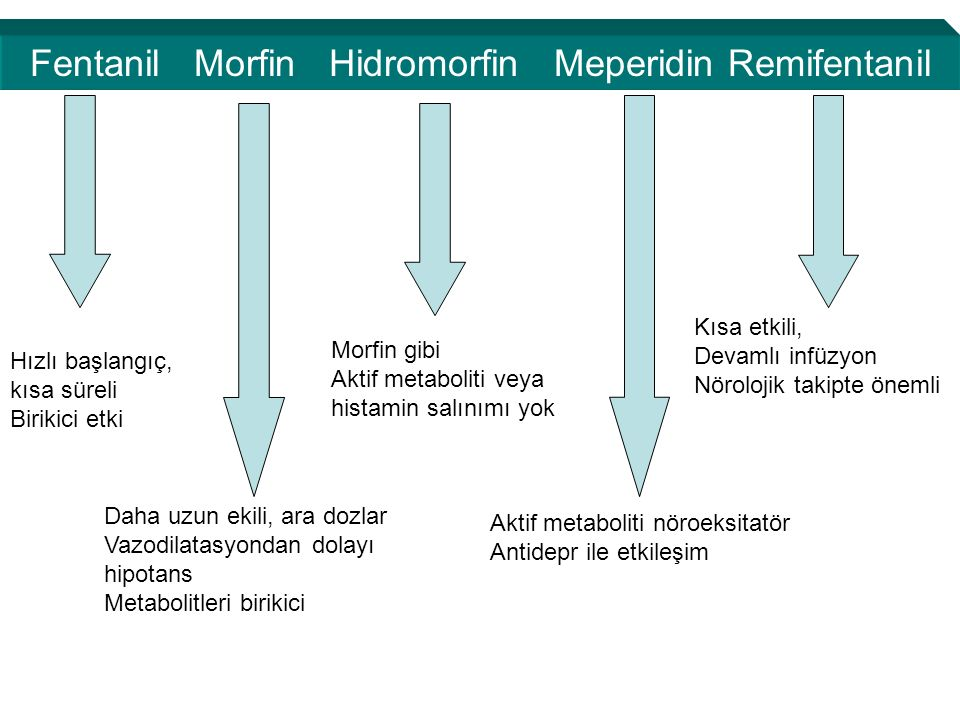Fentanil Morfin Hidromorfin Meperidin Remifentanil