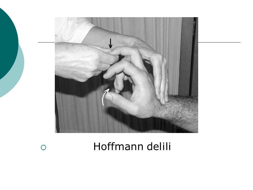 Hoffmann delili