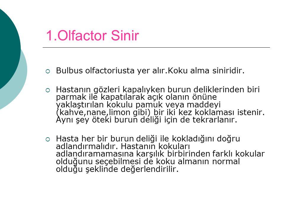 1.Olfactor Sinir Bulbus olfactoriusta yer alır.Koku alma siniridir.