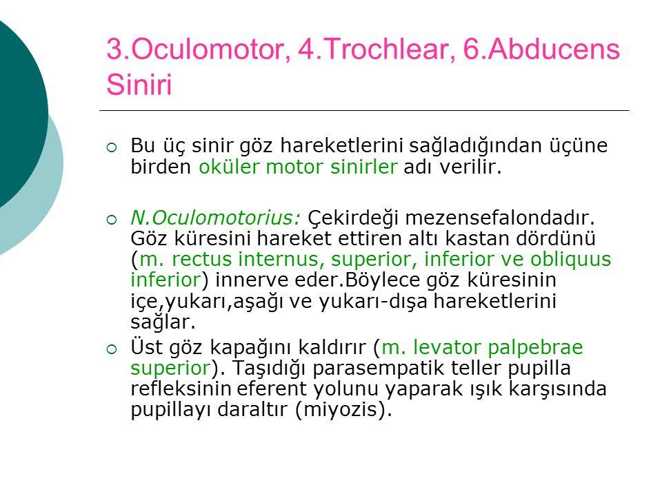 3.Oculomotor, 4.Trochlear, 6.Abducens Siniri
