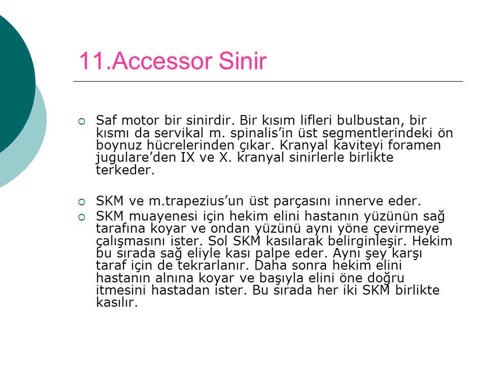 11.Accessor Sinir