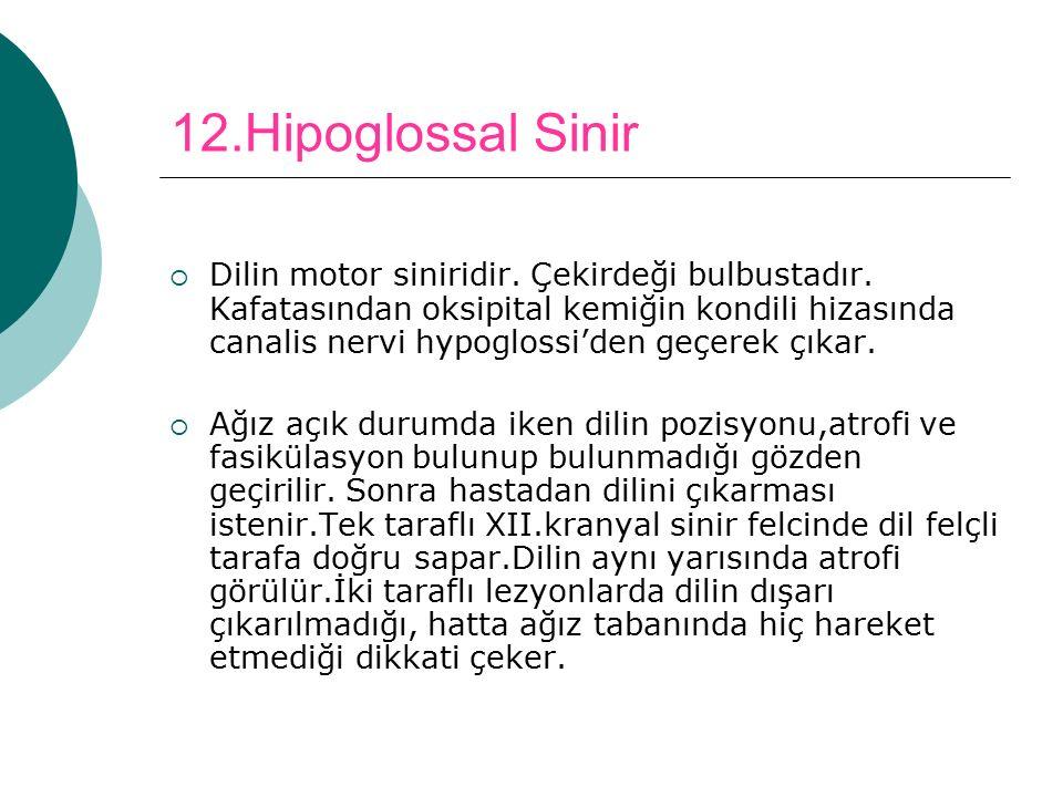 12.Hipoglossal Sinir