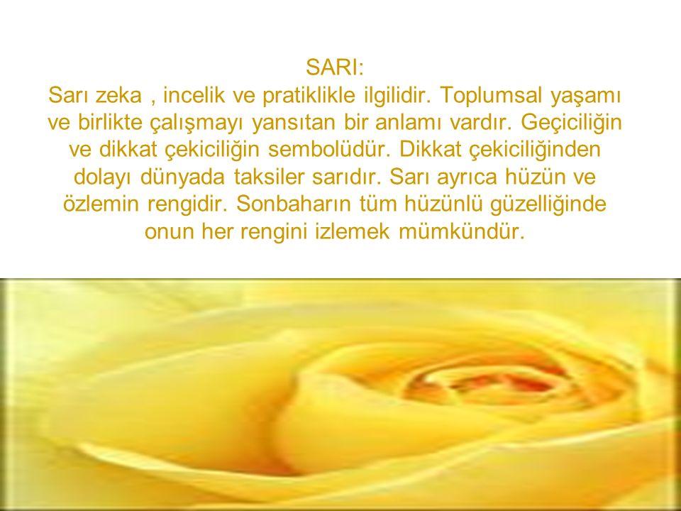 SARI: Sarı zeka , incelik ve pratiklikle ilgilidir