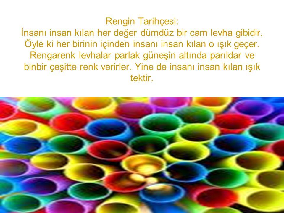 Rengin Tarihçesi: İnsanı insan kılan her değer dümdüz bir cam levha gibidir.