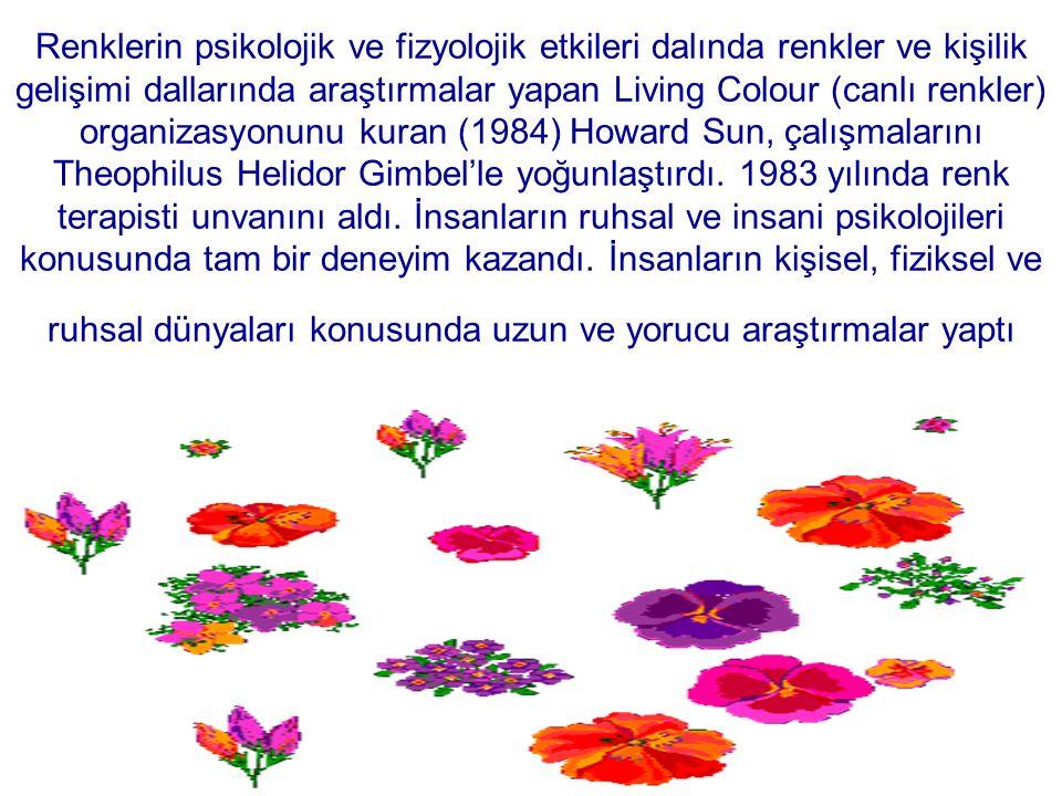 Renklerin psikolojik ve fizyolojik etkileri dalında renkler ve kişilik gelişimi dallarında araştırmalar yapan Living Colour (canlı renkler) organizasyonunu kuran (1984) Howard Sun, çalışmalarını Theophilus Helidor Gimbel'le yoğunlaştırdı.