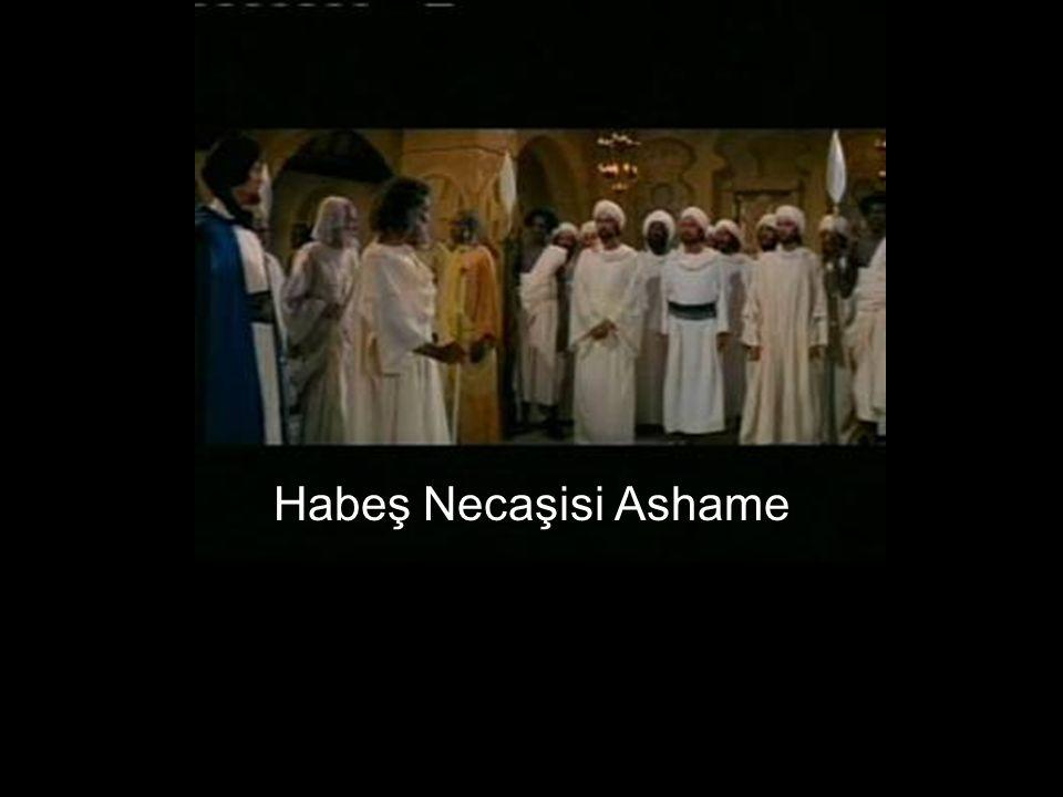 Habeş Necaşisi Ashame