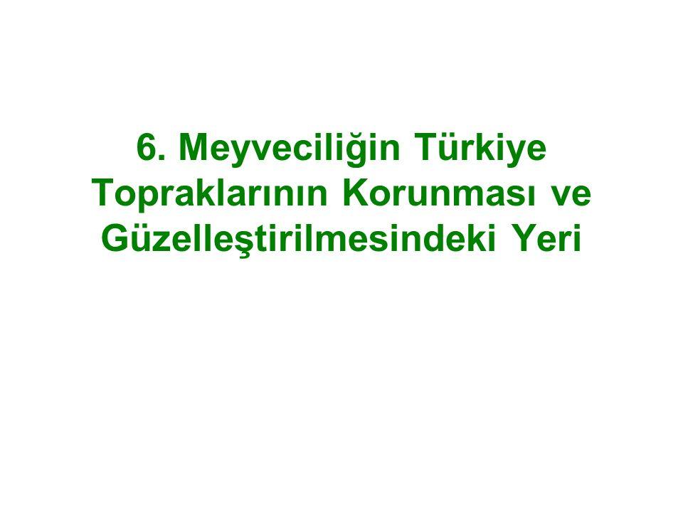 6. Meyveciliğin Türkiye Topraklarının Korunması ve Güzelleştirilmesindeki Yeri