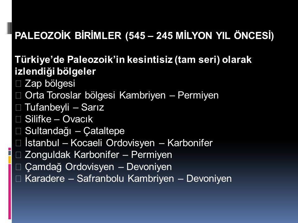 PALEOZOİK BİRİMLER (545 – 245 MİLYON YIL ÖNCESİ)