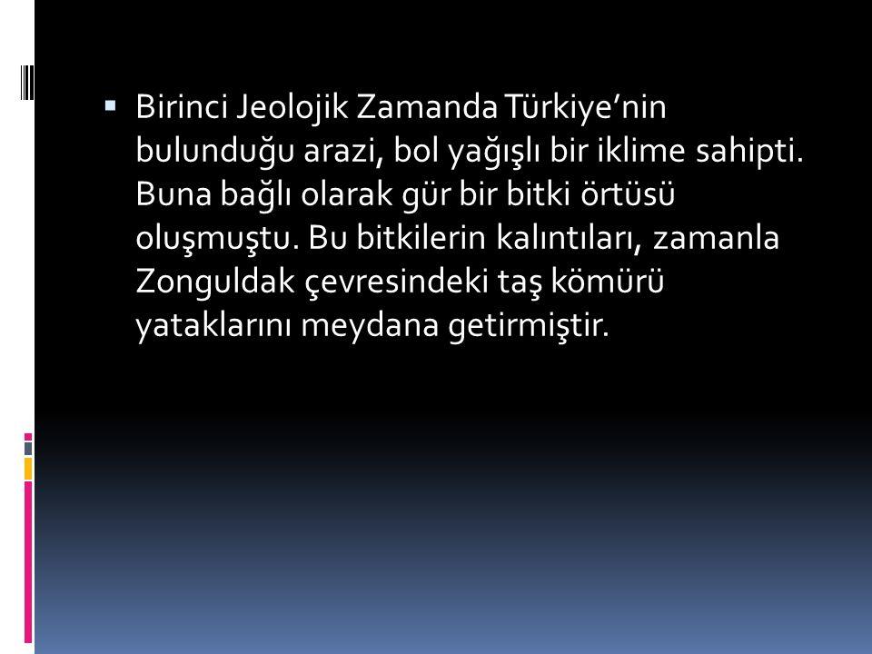 Birinci Jeolojik Zamanda Türkiye'nin bulunduğu arazi, bol yağışlı bir iklime sahipti.