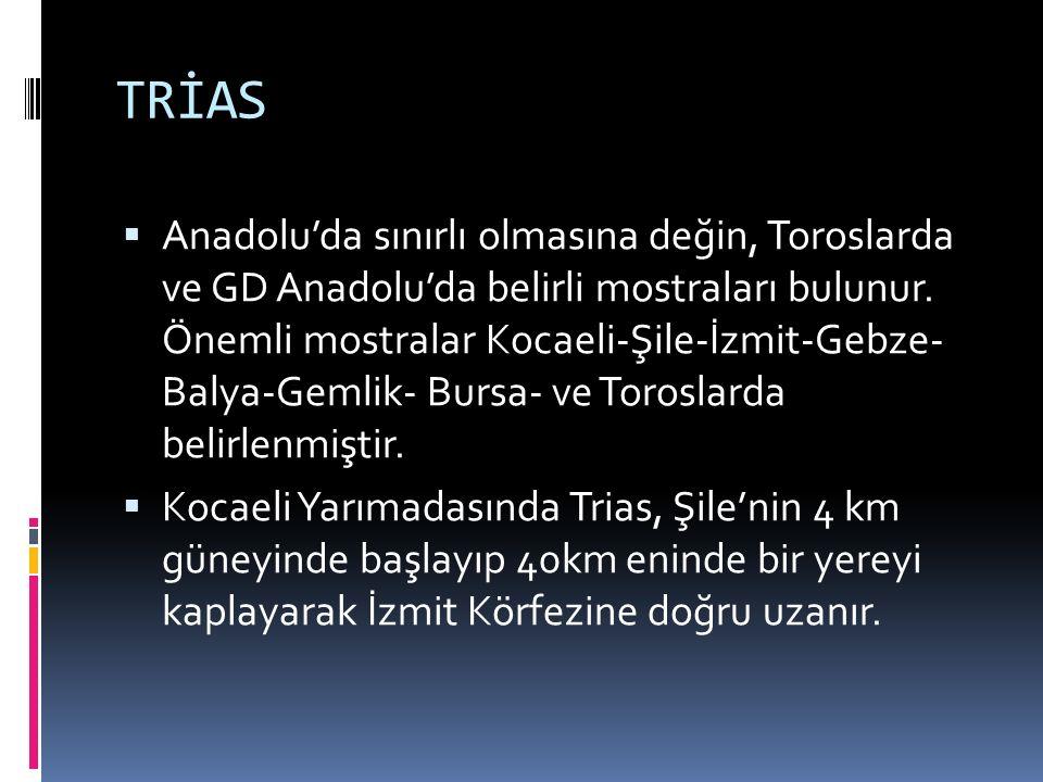 TRİAS