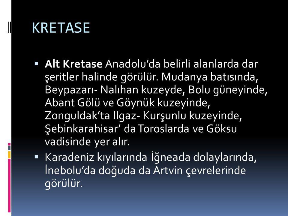 KRETASE