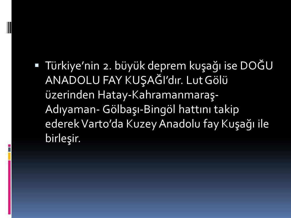 Türkiye'nin 2. büyük deprem kuşağı ise DOĞU ANADOLU FAY KUŞAĞI'dır