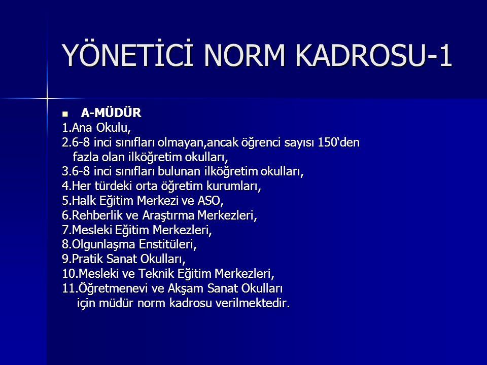 YÖNETİCİ NORM KADROSU-1