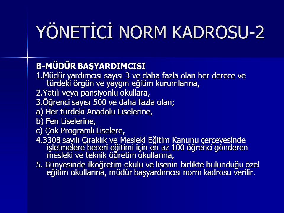 YÖNETİCİ NORM KADROSU-2