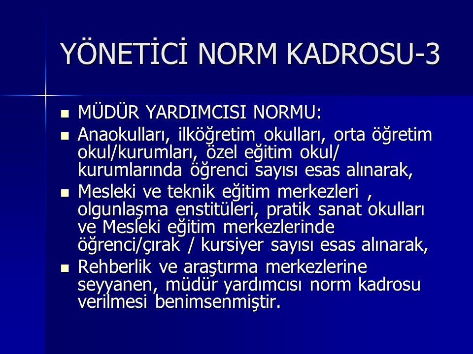 YÖNETİCİ NORM KADROSU-3