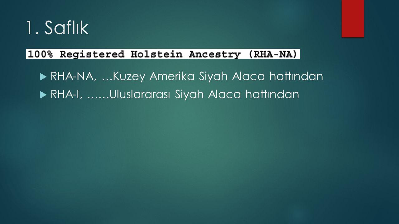 1. Saflık RHA-NA, …Kuzey Amerika Siyah Alaca hattından