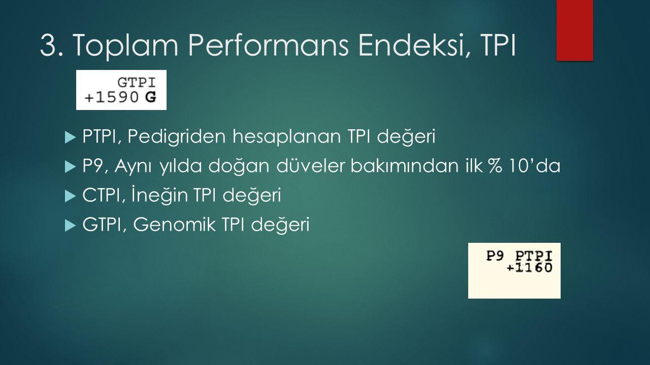 3. Toplam Performans Endeksi, TPI