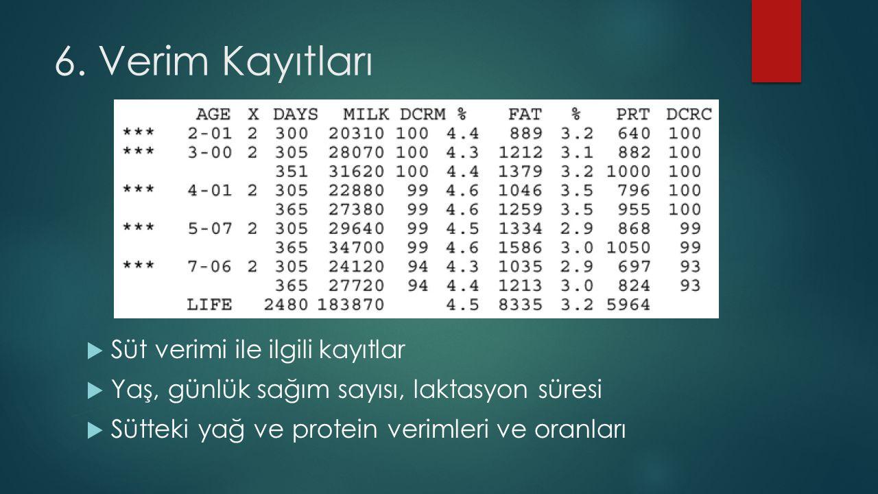 6. Verim Kayıtları Süt verimi ile ilgili kayıtlar