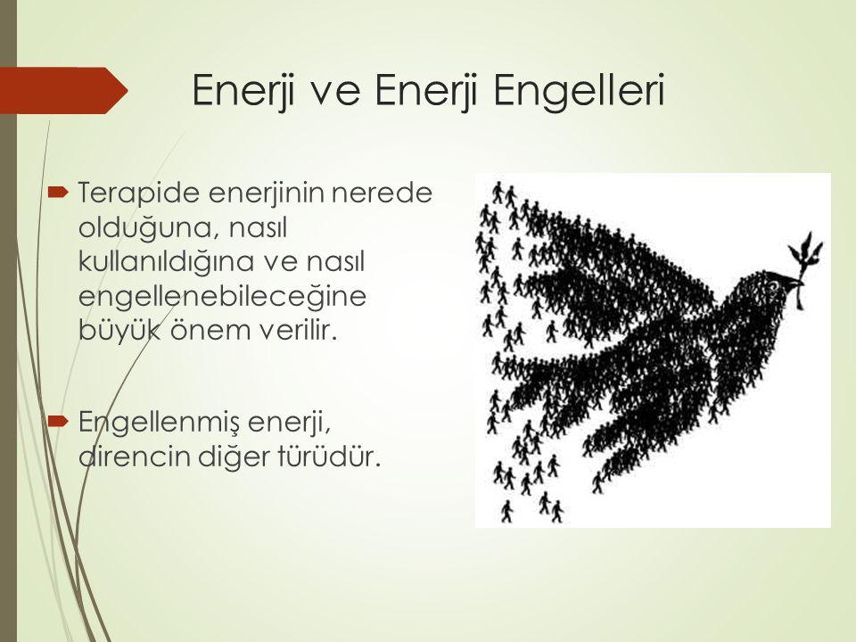 Enerji ve Enerji Engelleri
