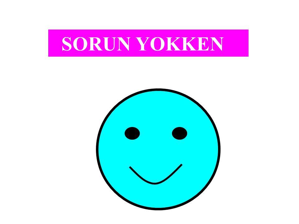 SORUN YOKKEN