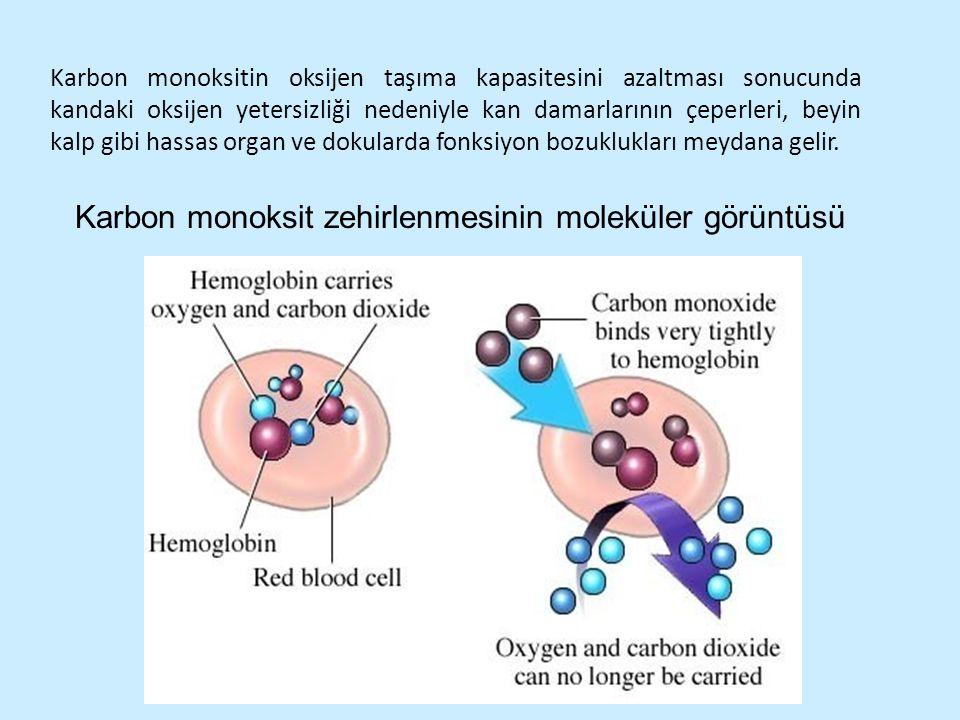 Karbon monoksit zehirlenmesinin moleküler görüntüsü