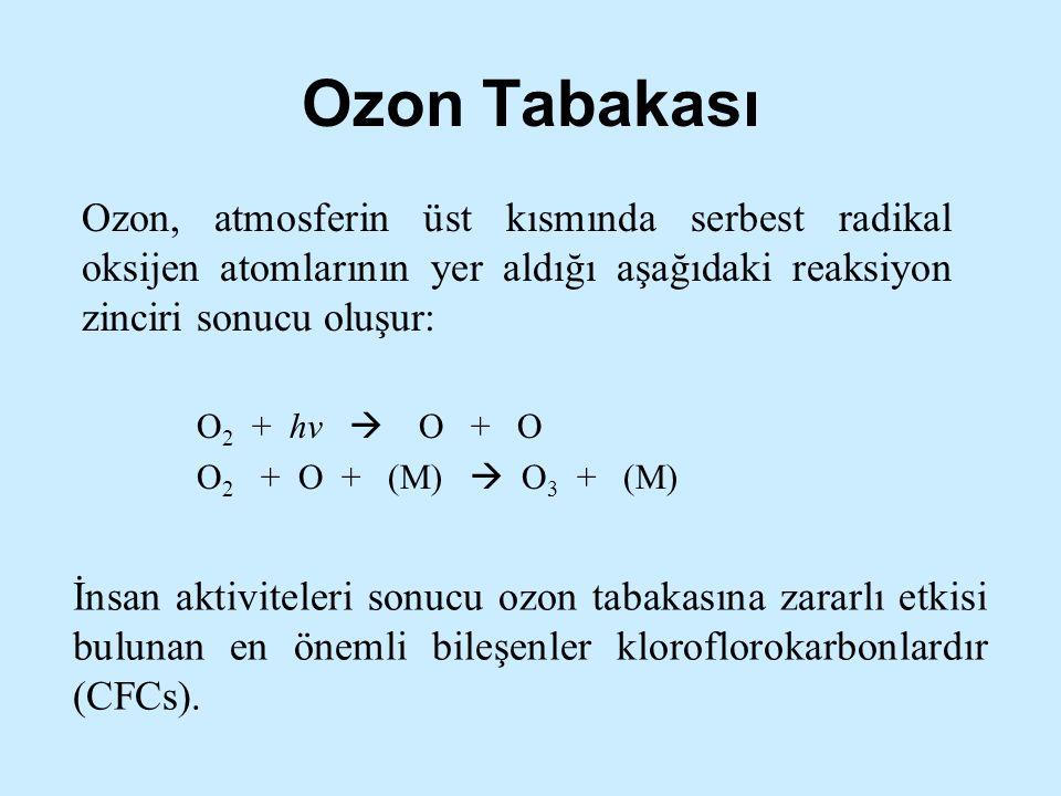 Ozon Tabakası Ozon, atmosferin üst kısmında serbest radikal oksijen atomlarının yer aldığı aşağıdaki reaksiyon zinciri sonucu oluşur:
