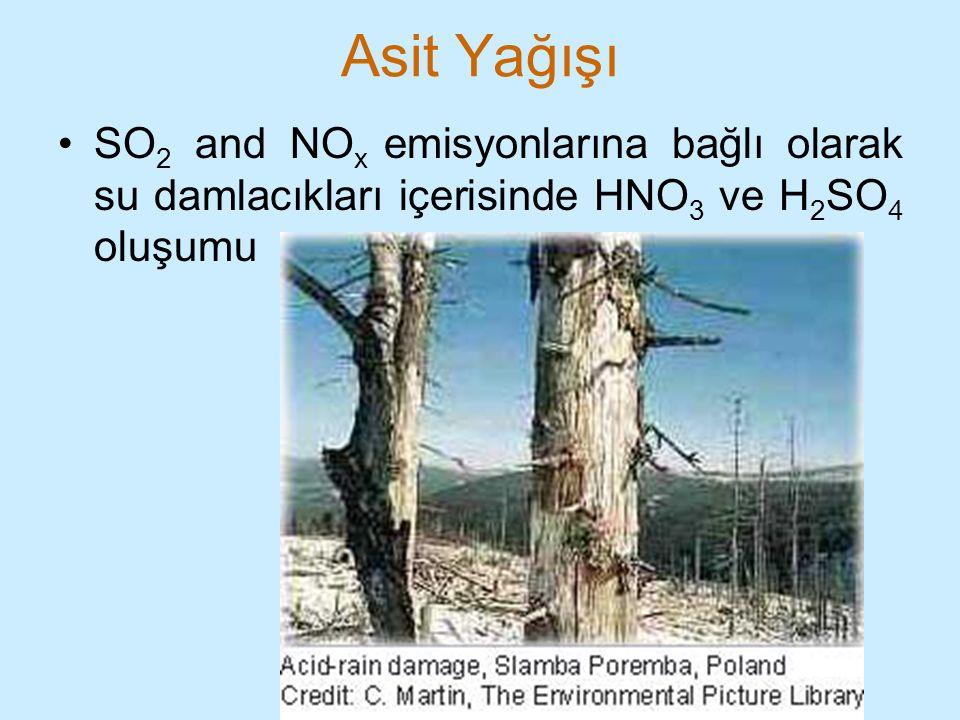 Asit Yağışı SO2 and NOx emisyonlarına bağlı olarak su damlacıkları içerisinde HNO3 ve H2SO4 oluşumu