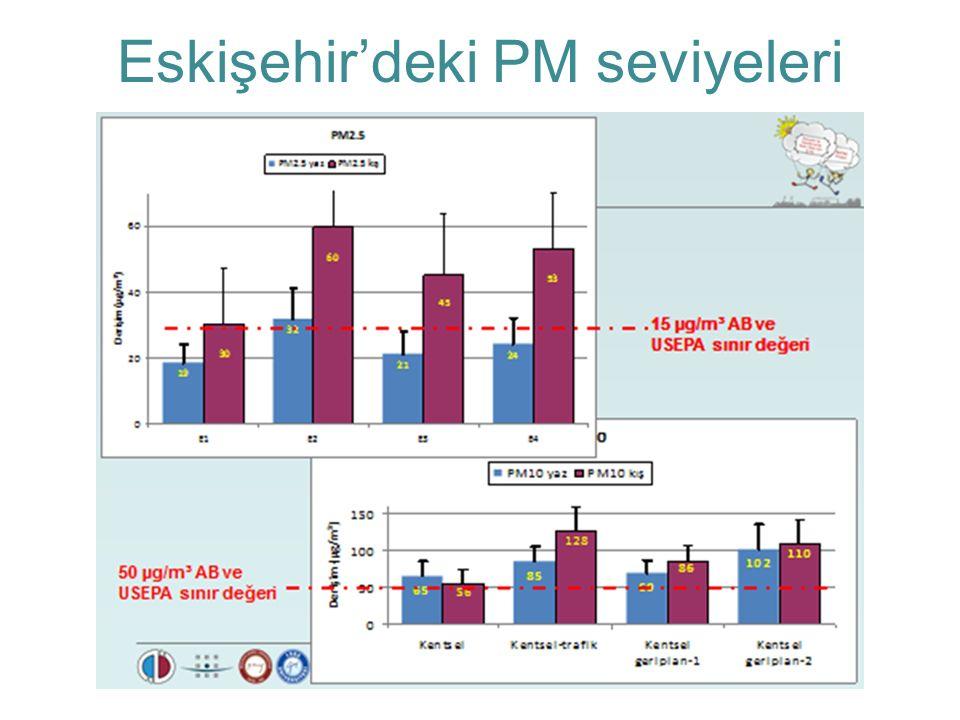Eskişehir'deki PM seviyeleri