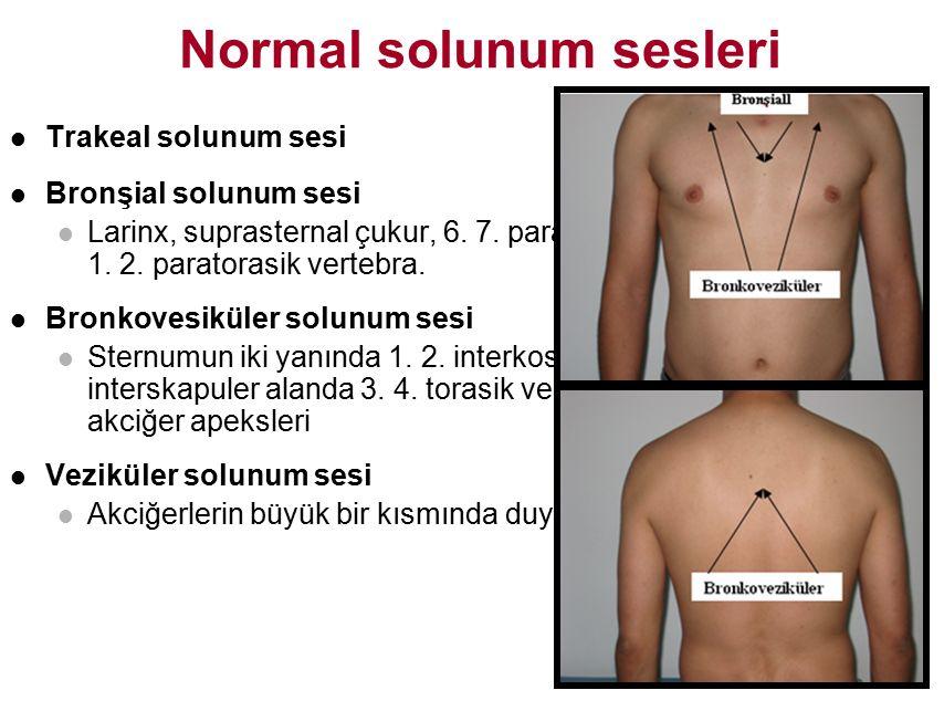 Normal solunum sesleri