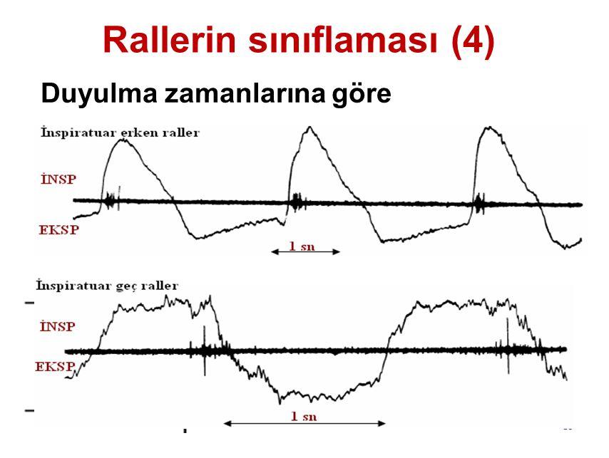Rallerin sınıflaması (4)