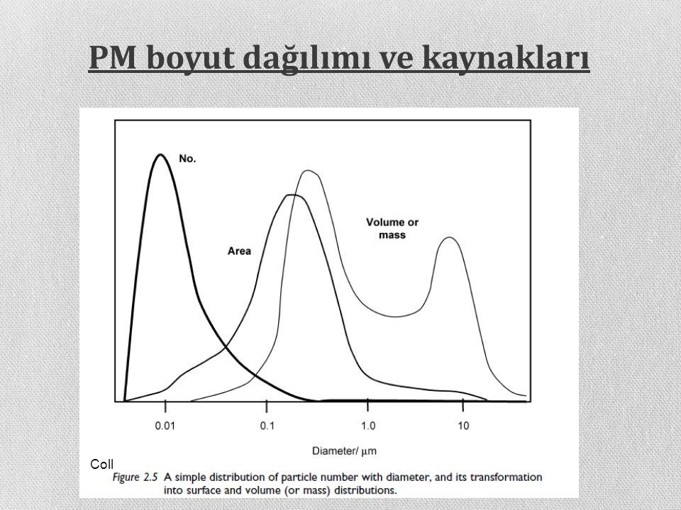 PM boyut dağılımı ve kaynakları