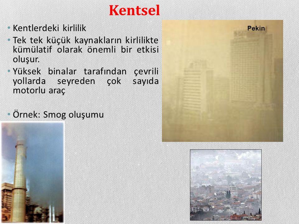 Kentsel Kentlerdeki kirlilik