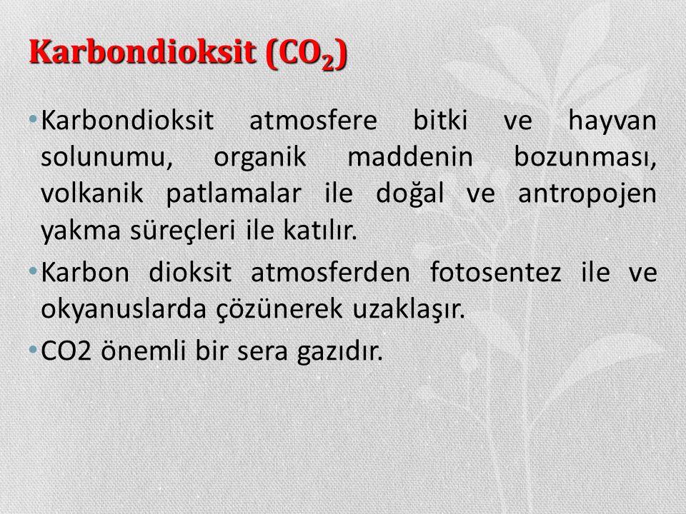 Karbondioksit (CO2)