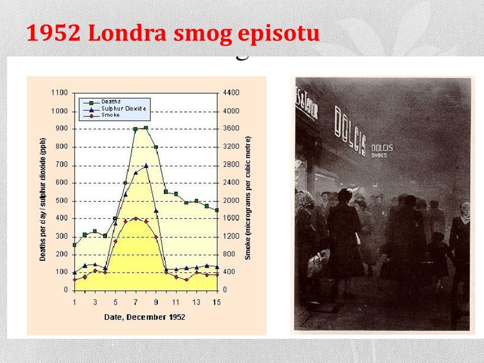 1952 Londra smog episotu