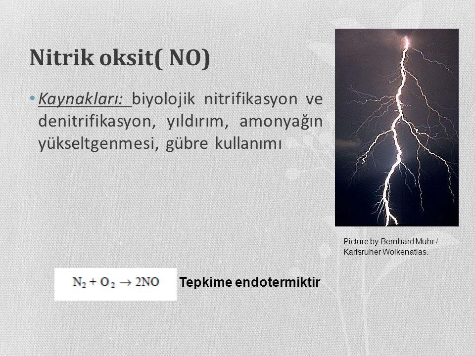 Nitrik oksit( NO) Kaynakları: biyolojik nitrifikasyon ve denitrifikasyon, yıldırım, amonyağın yükseltgenmesi, gübre kullanımı.