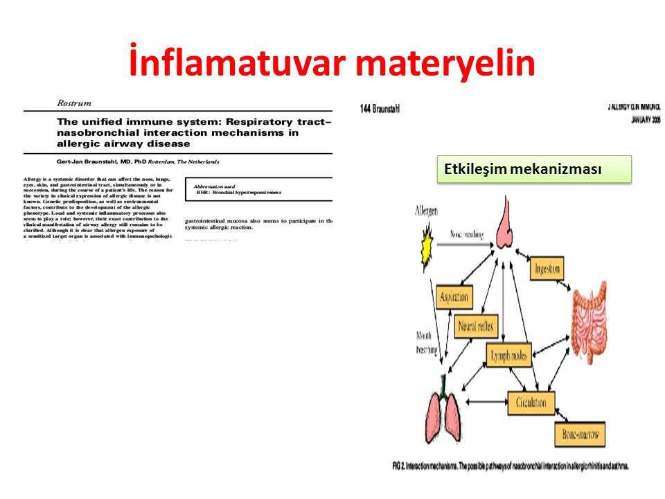 İnflamatuvar materyelin
