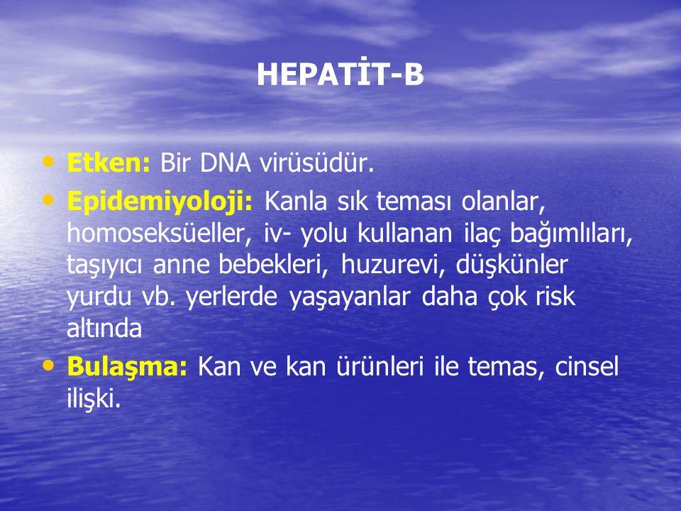 HEPATİT-B Etken: Bir DNA virüsüdür.