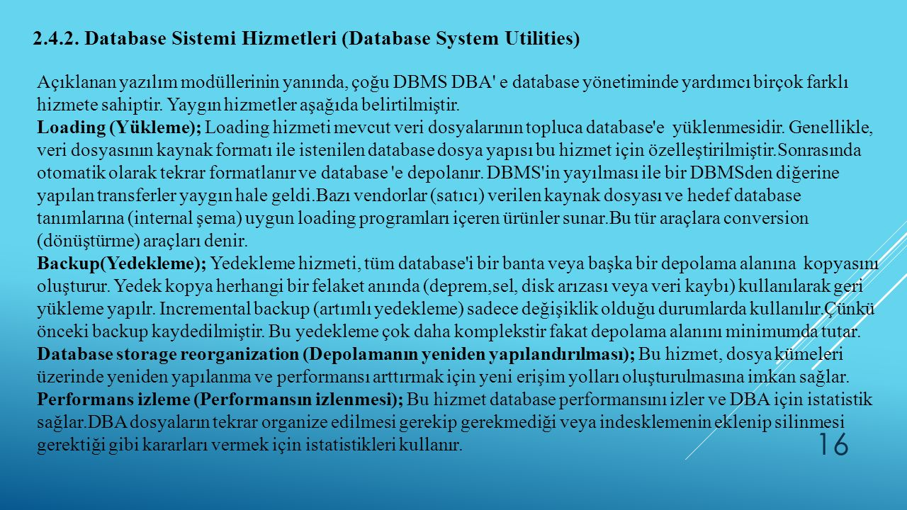 2.4.2. Database Sistemi Hizmetleri (Database System Utilities)